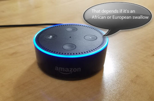 Funny, geeky and, creepy questions to ask Alexa